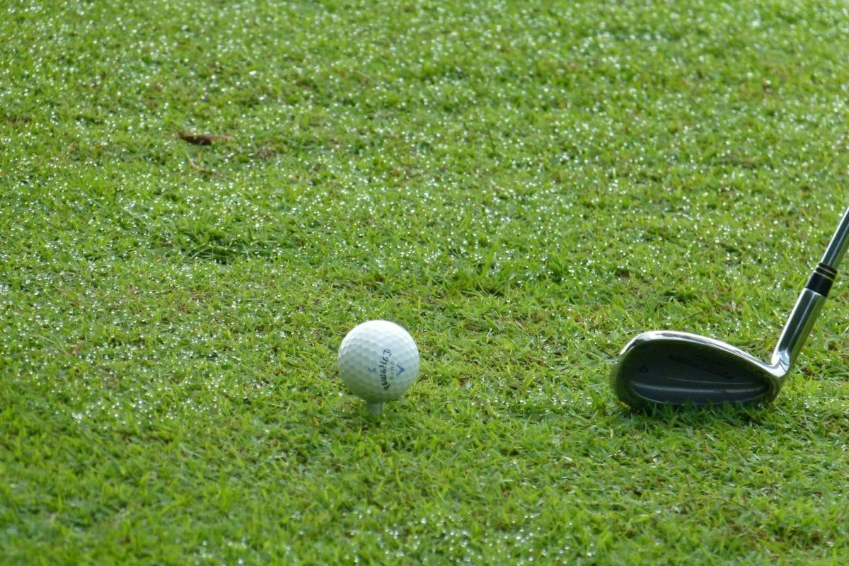 golfbal, bal, club, cursus, Golf, thee, Vrije tijd, gat