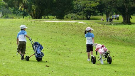 play, club, game, course, sport, grass, golf, leisure
