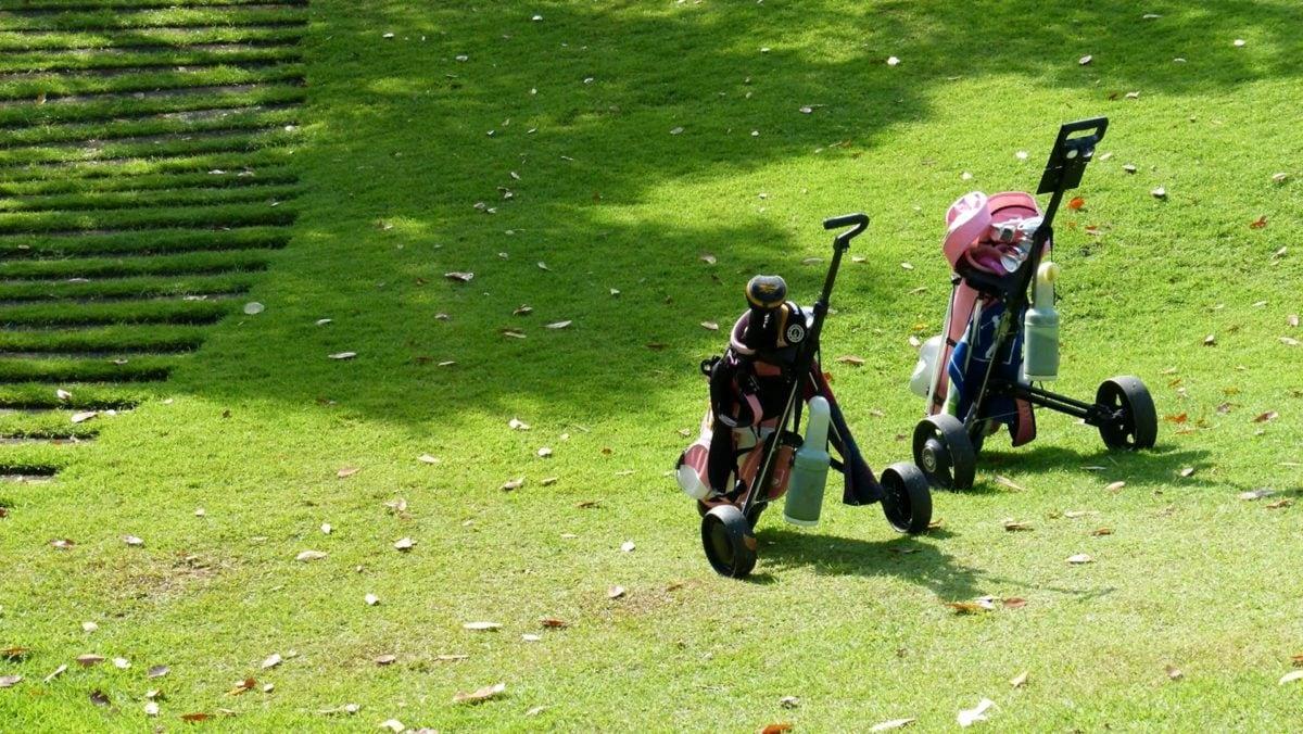 αποσκευές, γκολφ, Αθλητισμός, χλόη, ανταγωνισμού, αναψυχή, παιχνίδι