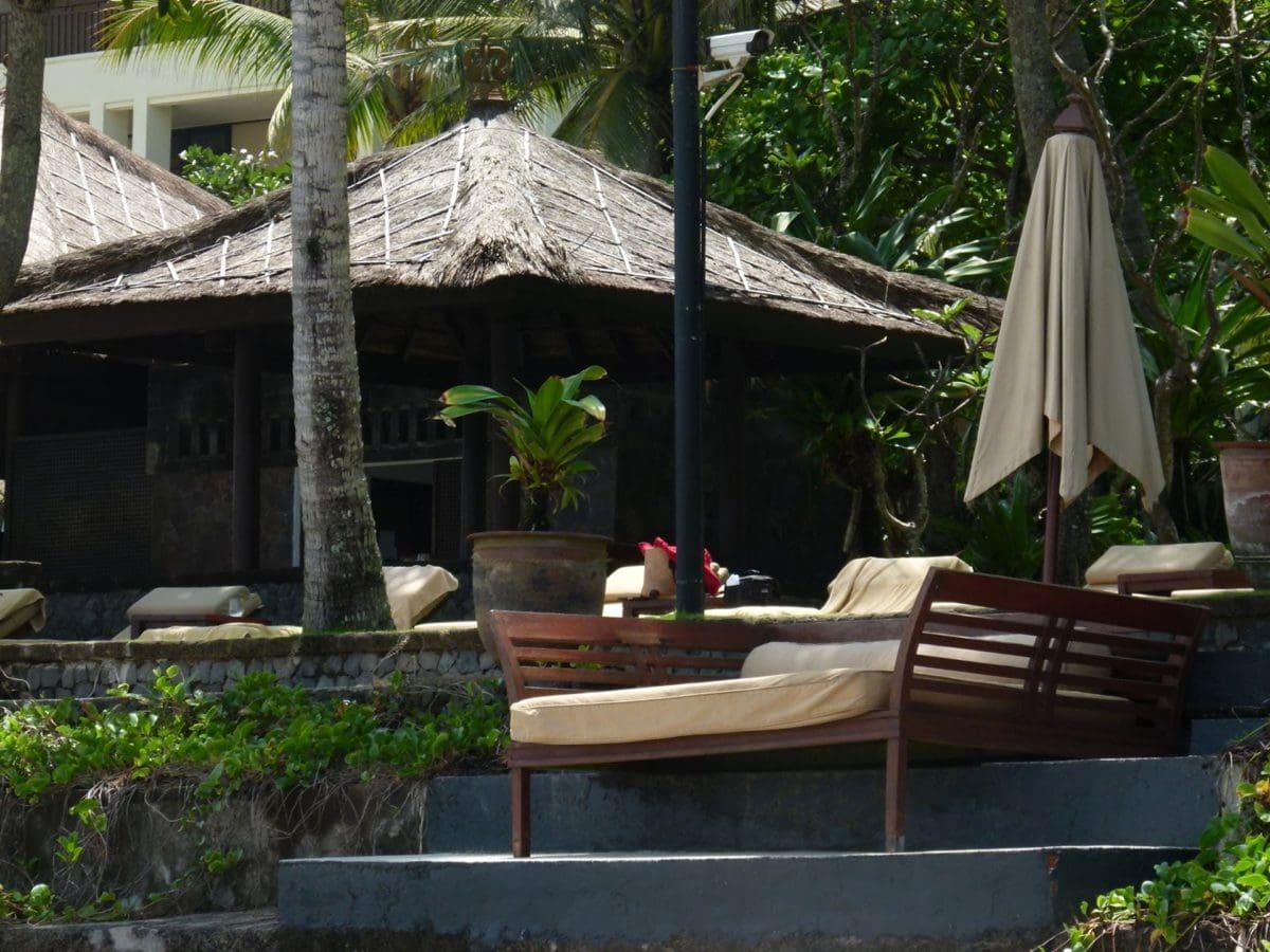 декорация, екстериор, мебели, празник, курорт, курортната зона, вътрешен двор, парникови
