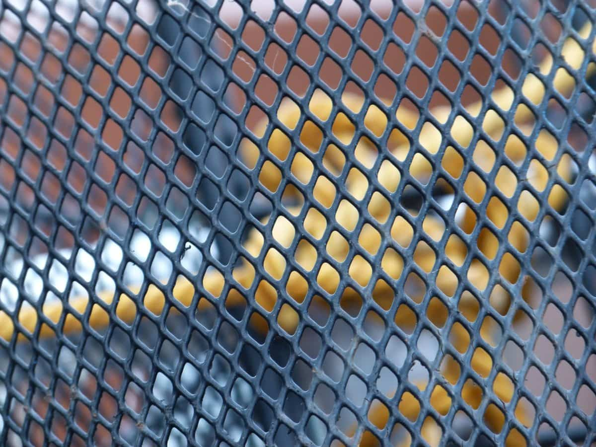 textura, vzor, železo, klec, ocel, bezpečnost, plot, web
