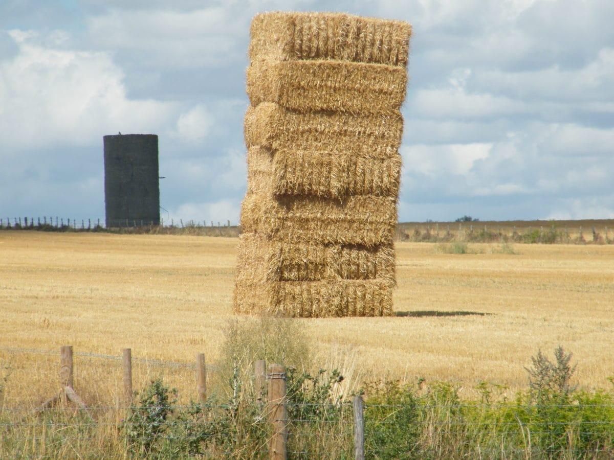 земеделска земя, сено поле, купа сено, летен сезон, лятно време, селски, сено, поле