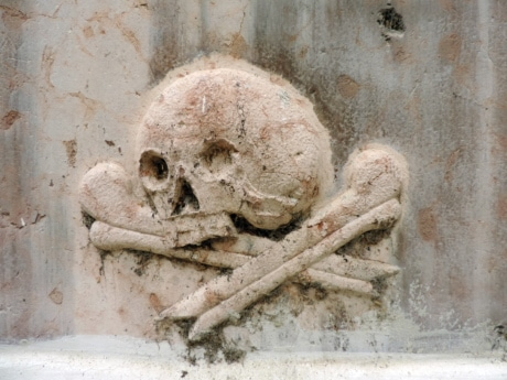 bones, marble, skull, old, wall, architecture, building, ancient
