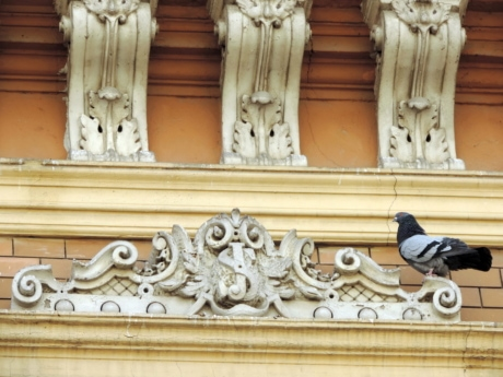baroque, exterior, facade, pigeon, sculpture, carving, architecture, marble
