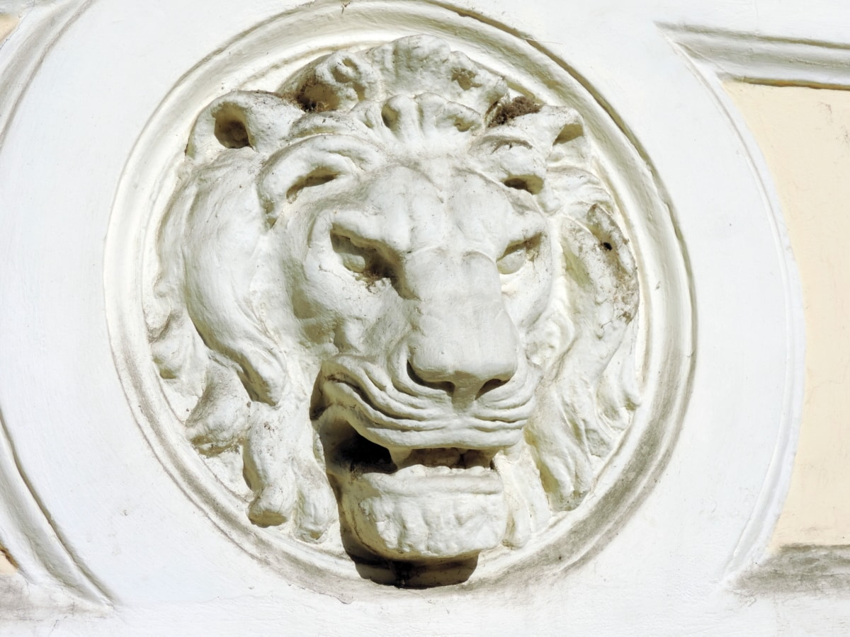 konst, barock, huvud, lejon, skulptur, lättnad, närbild, dekoration