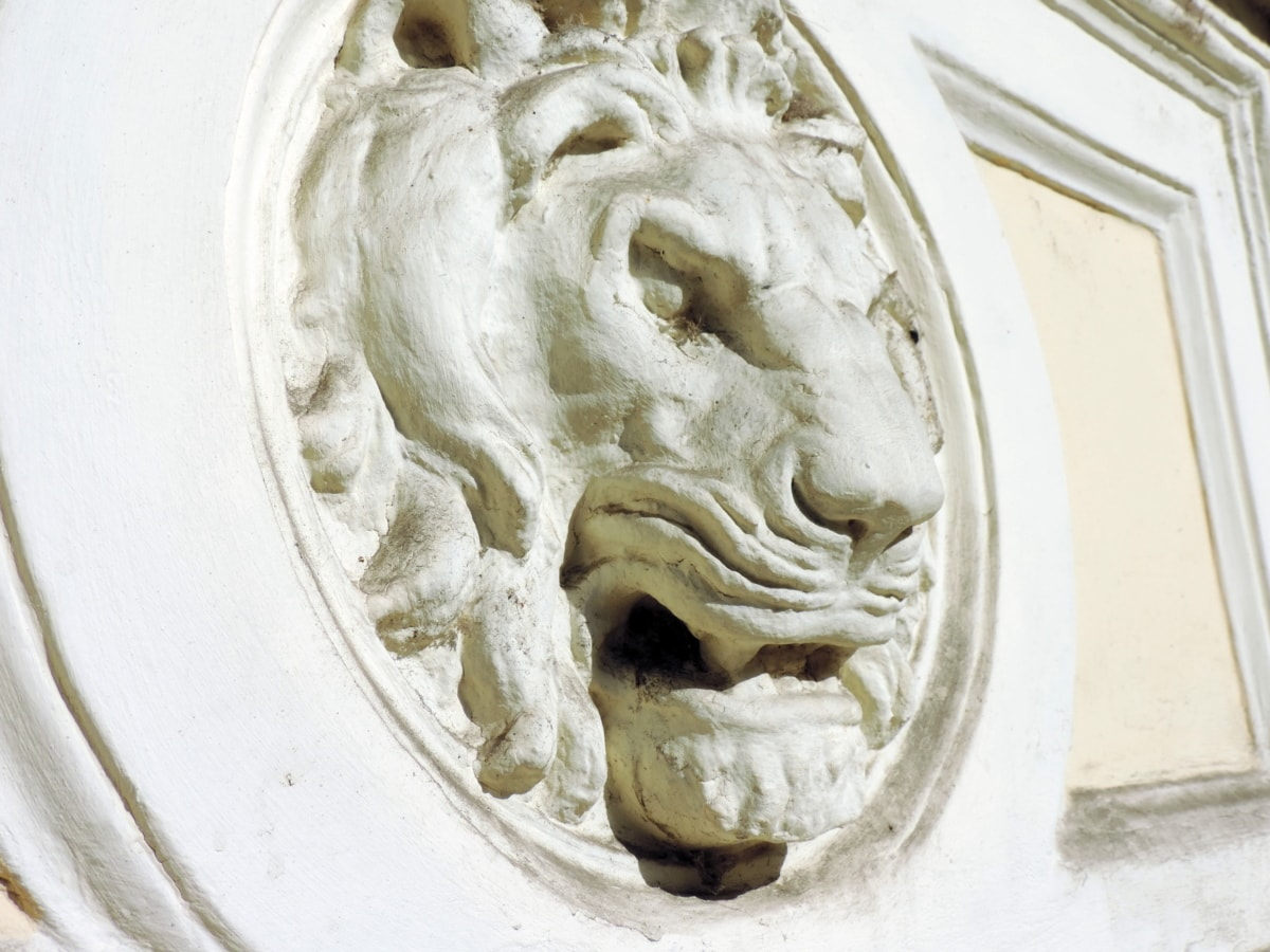 lion, sculpture, art, decoration, upclose, symbol, face, museum