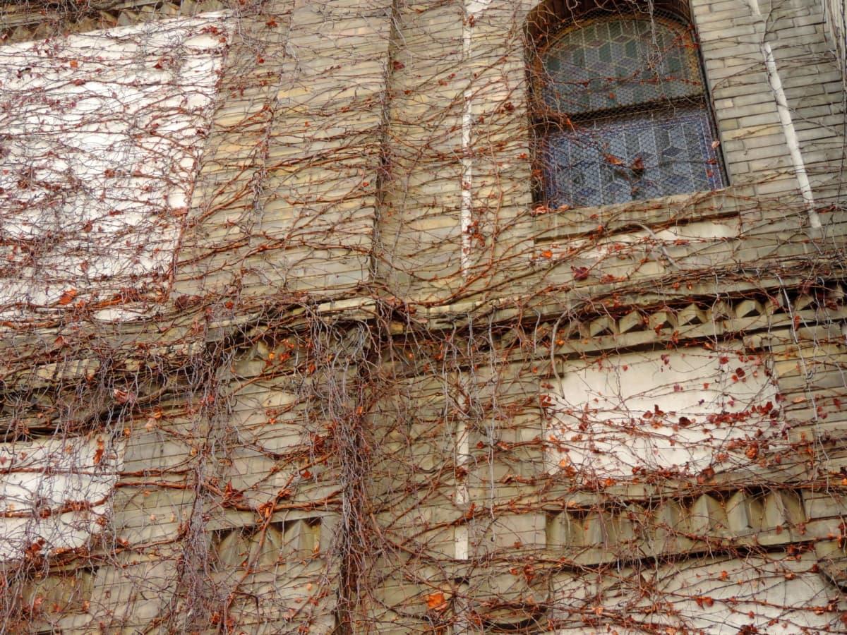 vanha, seinä, tiili, arkkitehtuuri, rakenne, lauseke, likainen, Ohje