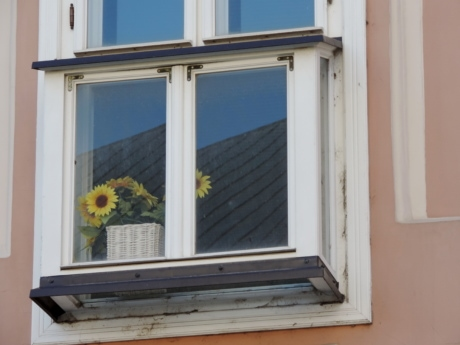 baroque, flowerpot, sunflower, window, building, house, home, architecture