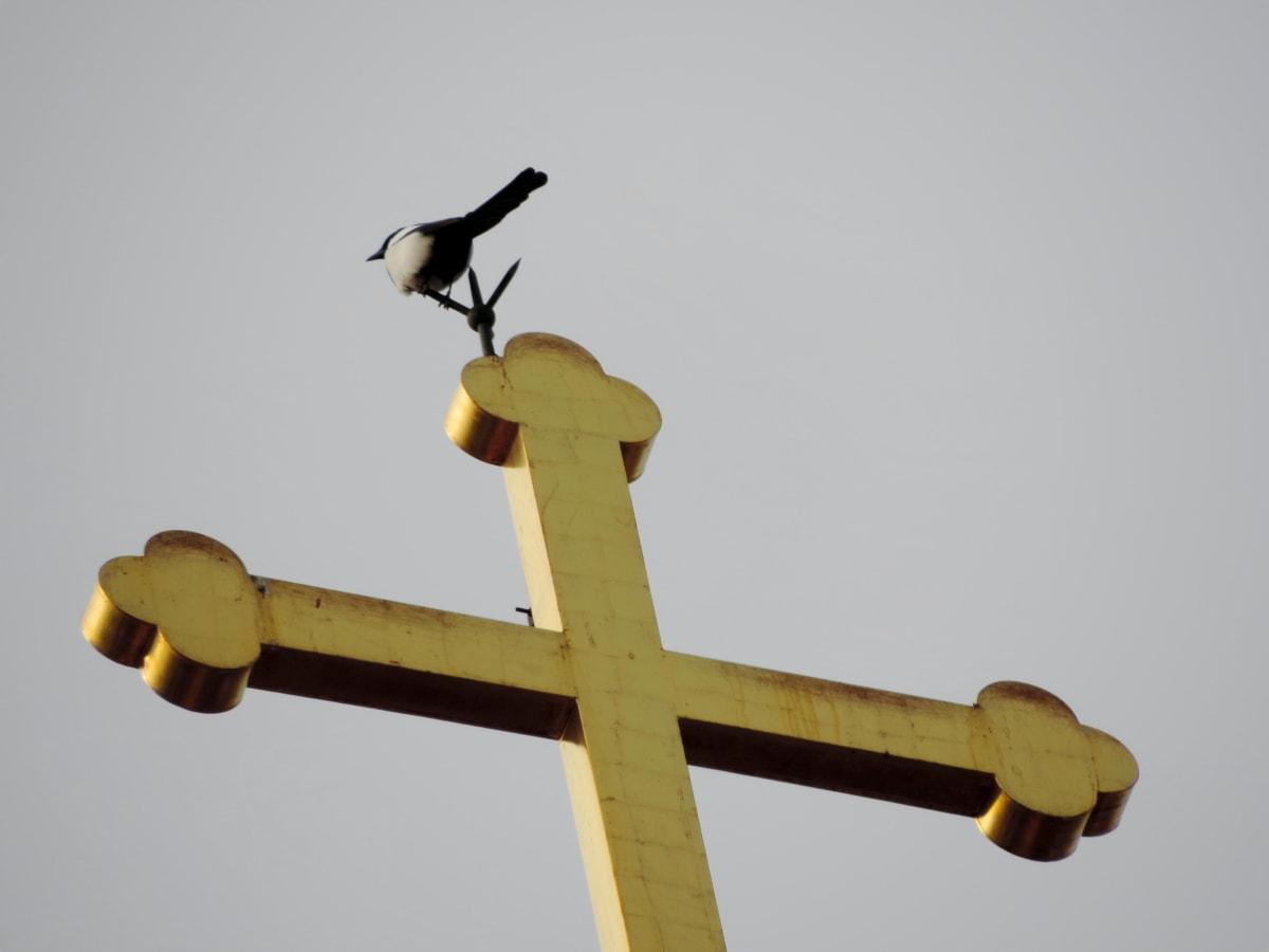 Злато, птица, дневна светлина, кръст, на открито, религия, светлина, църква