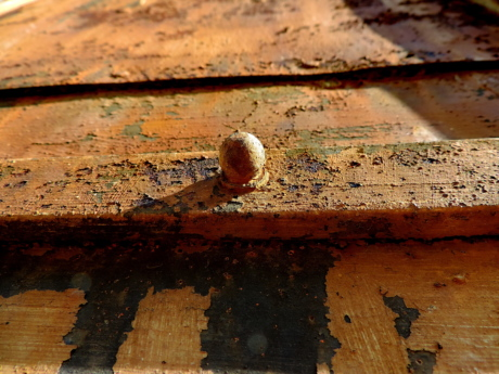 fastener, wall, old, rust, wood, texture, iron, upclose