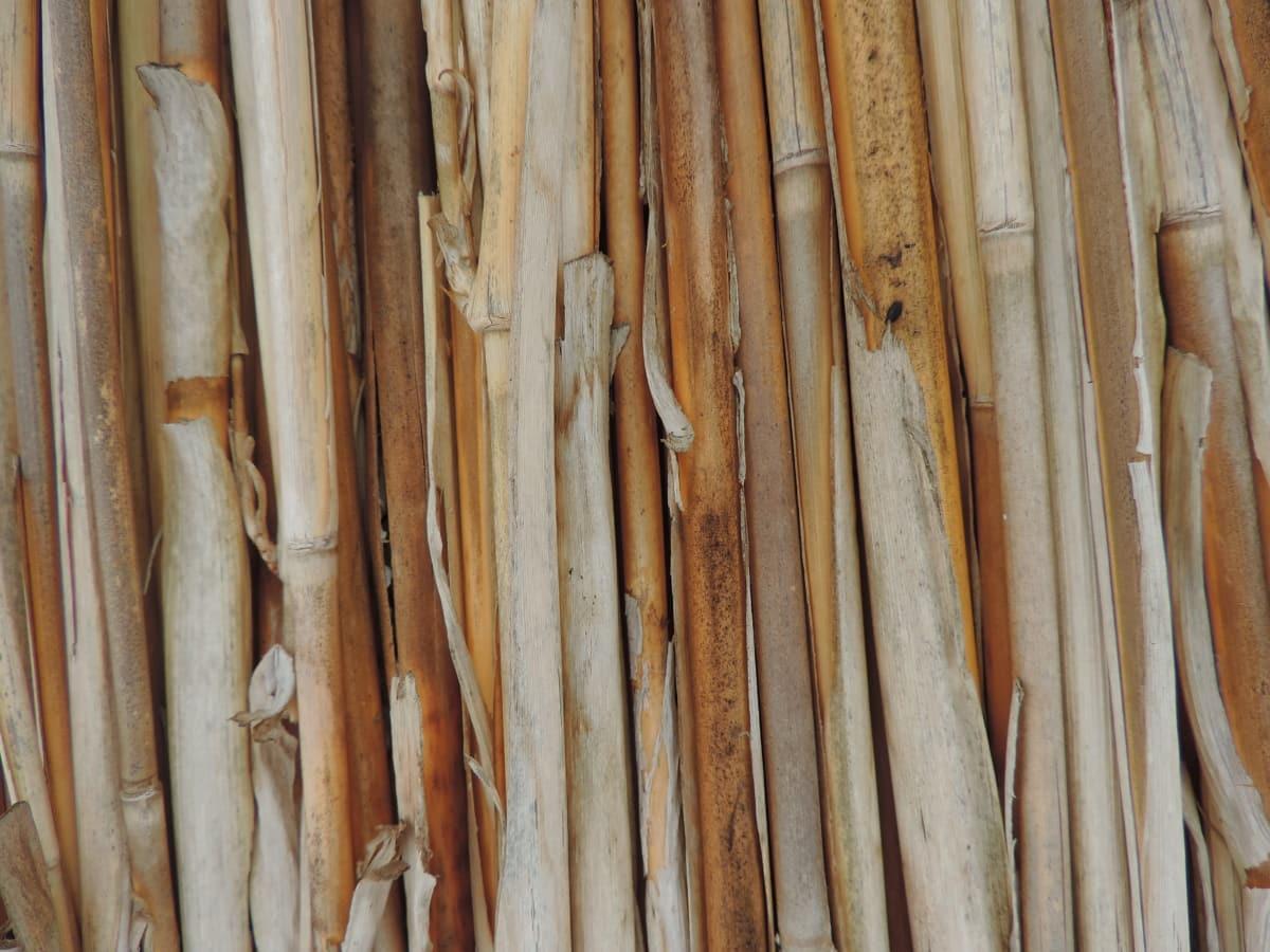 Текстура, Кора, палиці, Деревина, великий план, візерунок, природа, дерев'яні