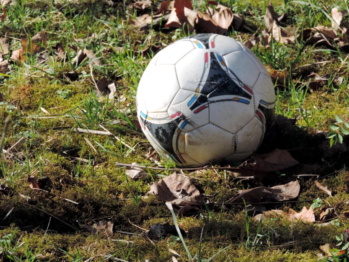 championnat, sport, compétition, football, football, Ball, jeu, ballon de soccer
