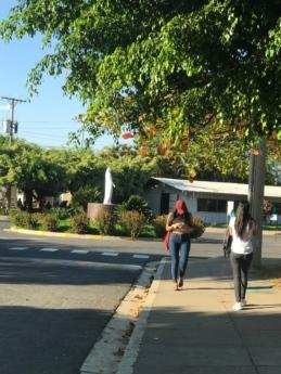 fată drăguţă, soare, drumul, strada, oameni, copac, trotuar, oraș