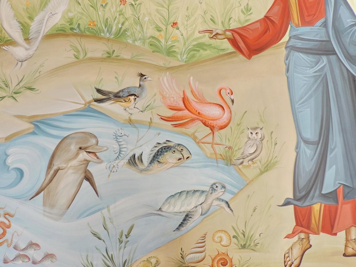 ζώα, δημιουργικότητα, Δελφίνι, φλαμίνγκο, τοιχογραφία, πρόσωπο, άγρια φύση, Εικονογράφηση