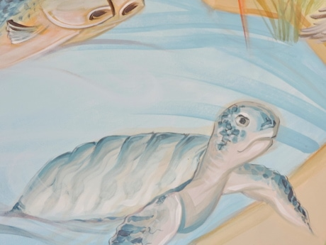 art, graffiti, mural, sea turtle, color, beautiful, design, dawn