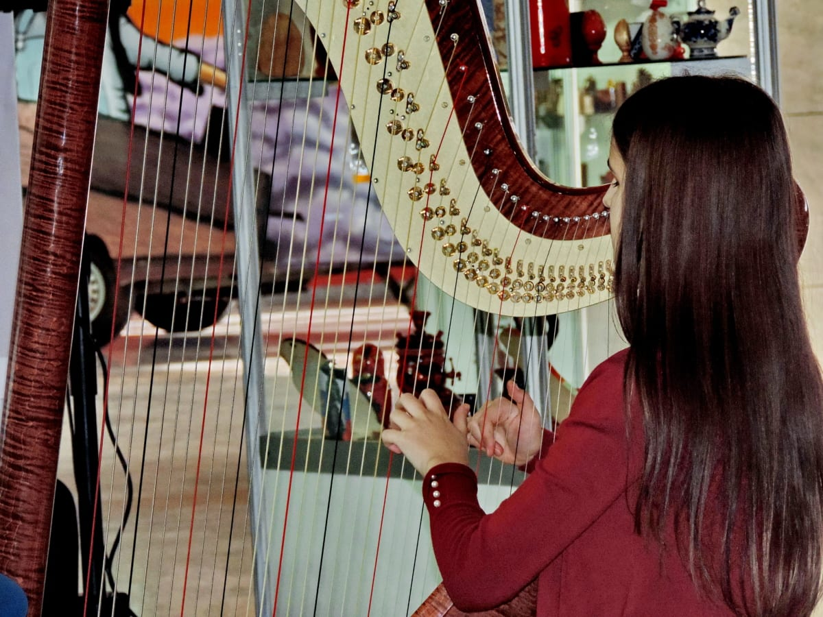 glazbenik, lijepa djevojka, uređaj, glazba, ljudi, zabava, stil, instrumenta