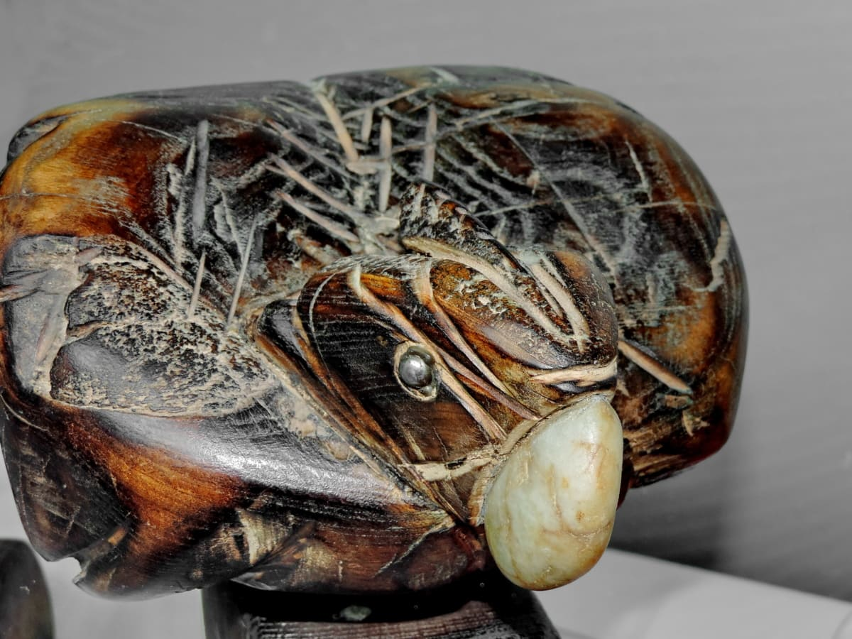ptica, skulptura, drvo, priroda, životinja, biljni i životinjski svijet, pogled iz blizine, umjetnost