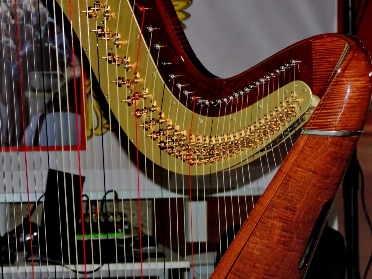 acoustic, luxury, orchestra, instrument, music, sound, classic, musician