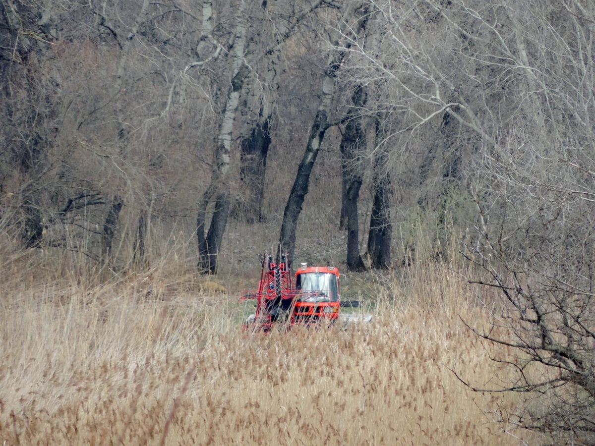 vidéken, gép, mocsár, traktor, táj, eszköz, Aratógép, jármű