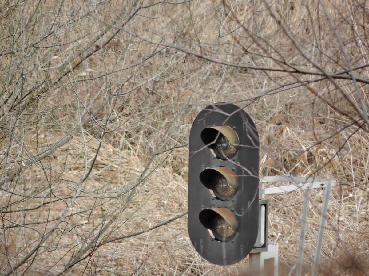 željeznički kolodvor, kontrola prometa, svjetlo na semaforu, drvo, priroda, drvo, na otvorenom, okoliš