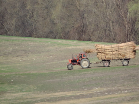 agriculture, field work, tractor, vehicle, landscape, farm, machine, field