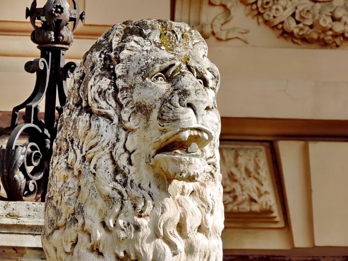 главата, Лъв, мрамор, портрет, скулптура, статуя, дърворезба, изкуство