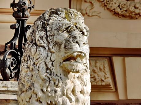 head, lion, marble, portrait, sculpture, statue, carving, art