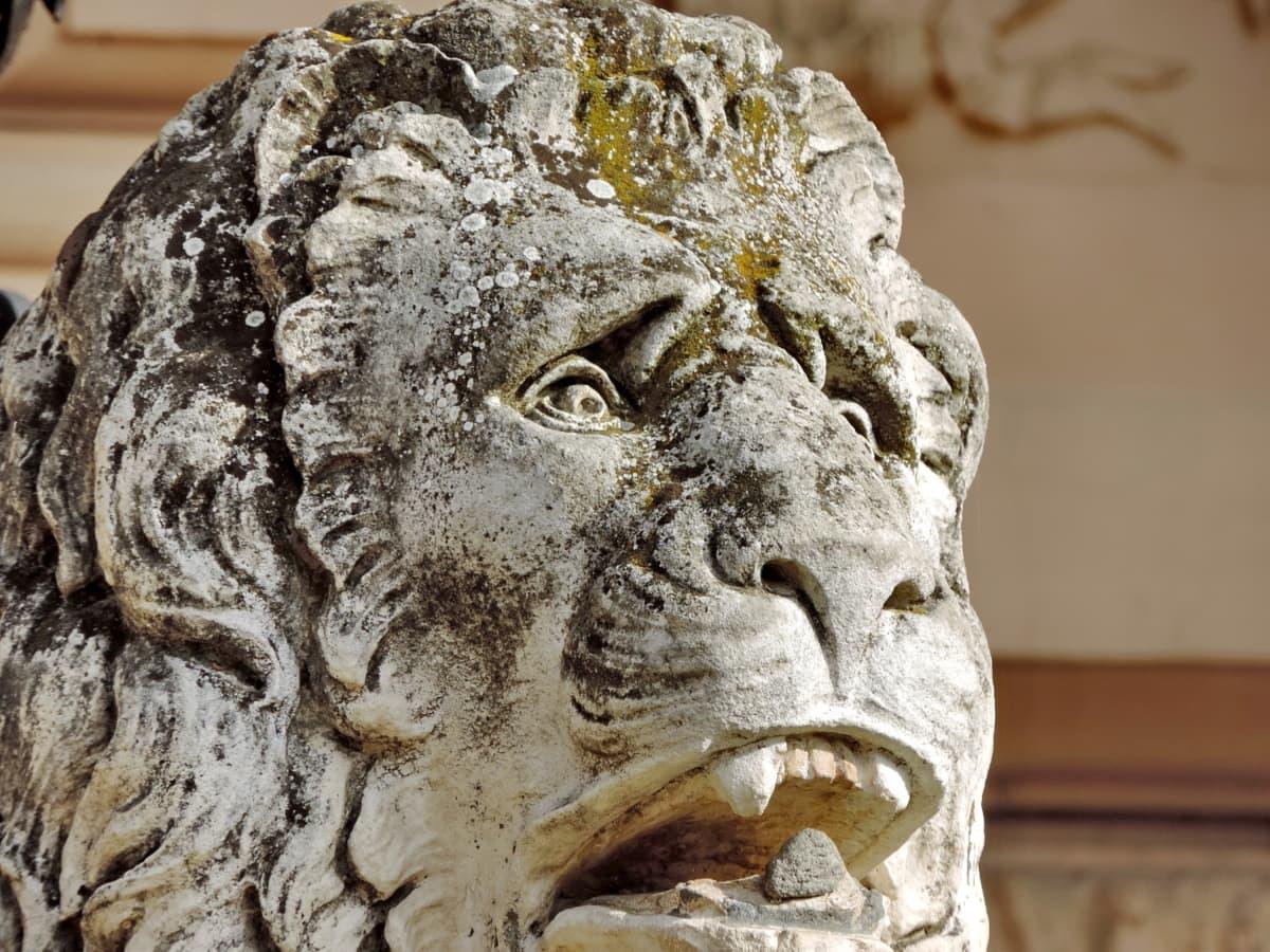 head, lion, art, statue, ancient, sculpture, religion, old