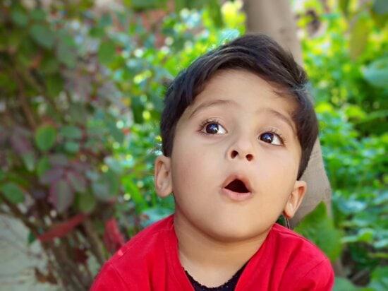 boy, photo model, portrait, son, childhood, cute, happiness, child