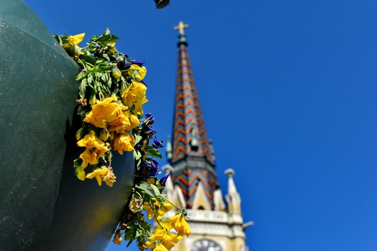 menara gereja, pot bunga, arsitektur, di luar rumah, seni, bunga, daun, Kota