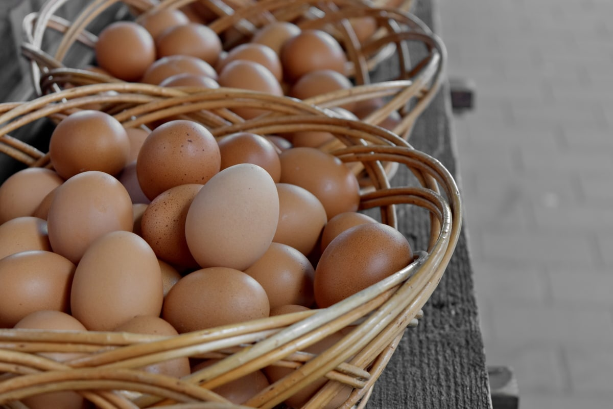 rieten mand, voedsel, mand, kip, ei, hout, traditionele, gezondheid