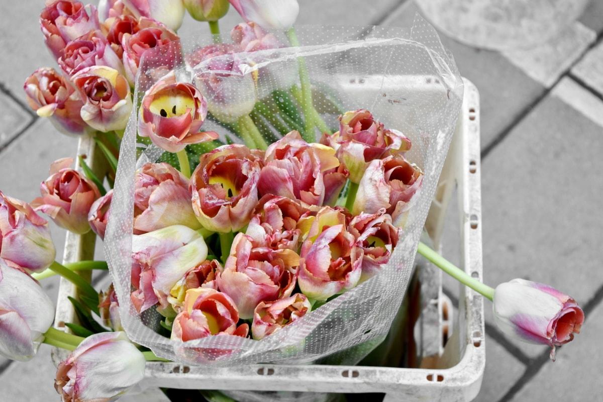 Подреждане, букет, декорация, цвете, листа, природата, венчелистче, цъфтят