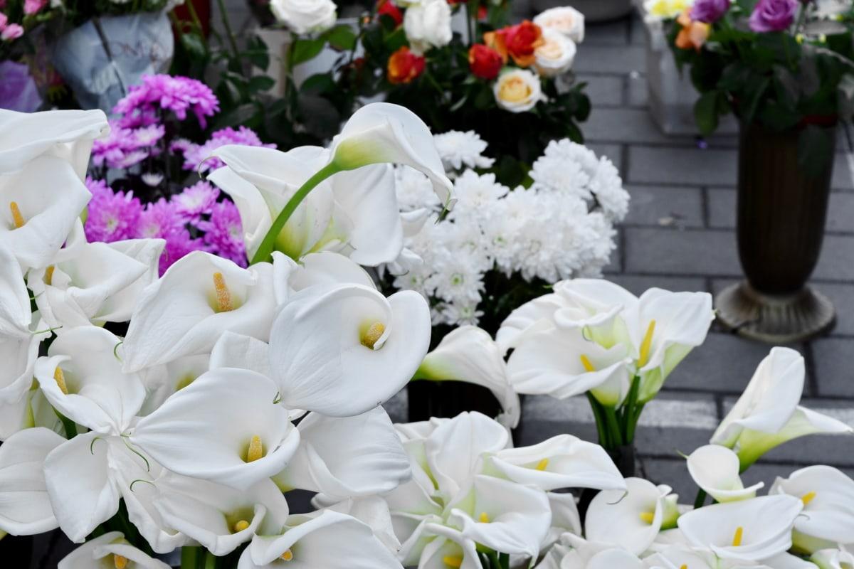 bloemen, decoratie, regeling, boeket, bloem, tuin, bruiloft, flora