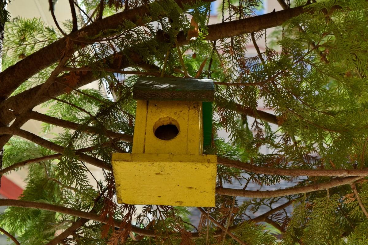 ramas, coníferas, decoración, objeto, casa del árbol, árbol, madera, madera