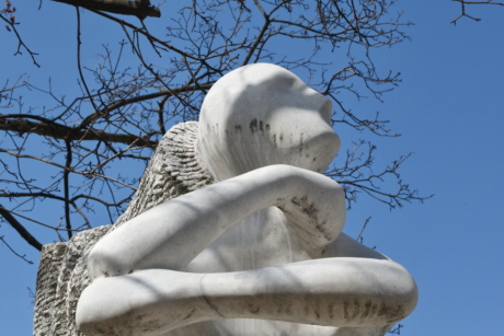 marble, sculpture, white, statue, art, tree, architecture, symbol