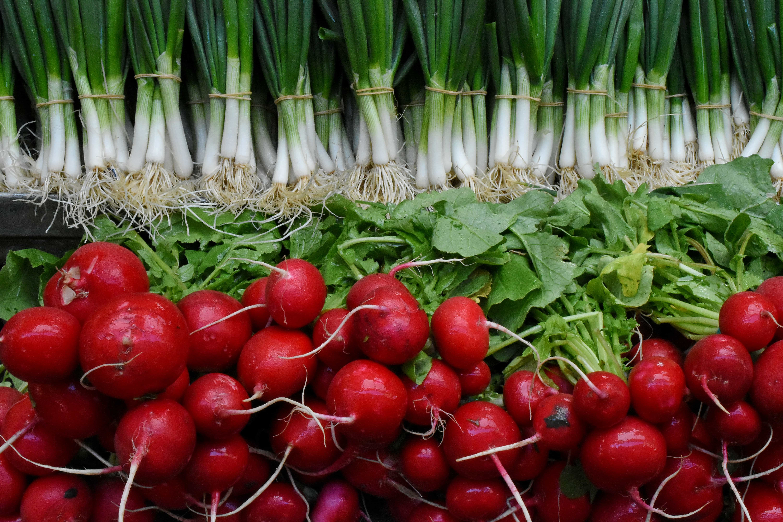 Imagine Gratuită Rădăcină Alimente Ridiche Sănătos