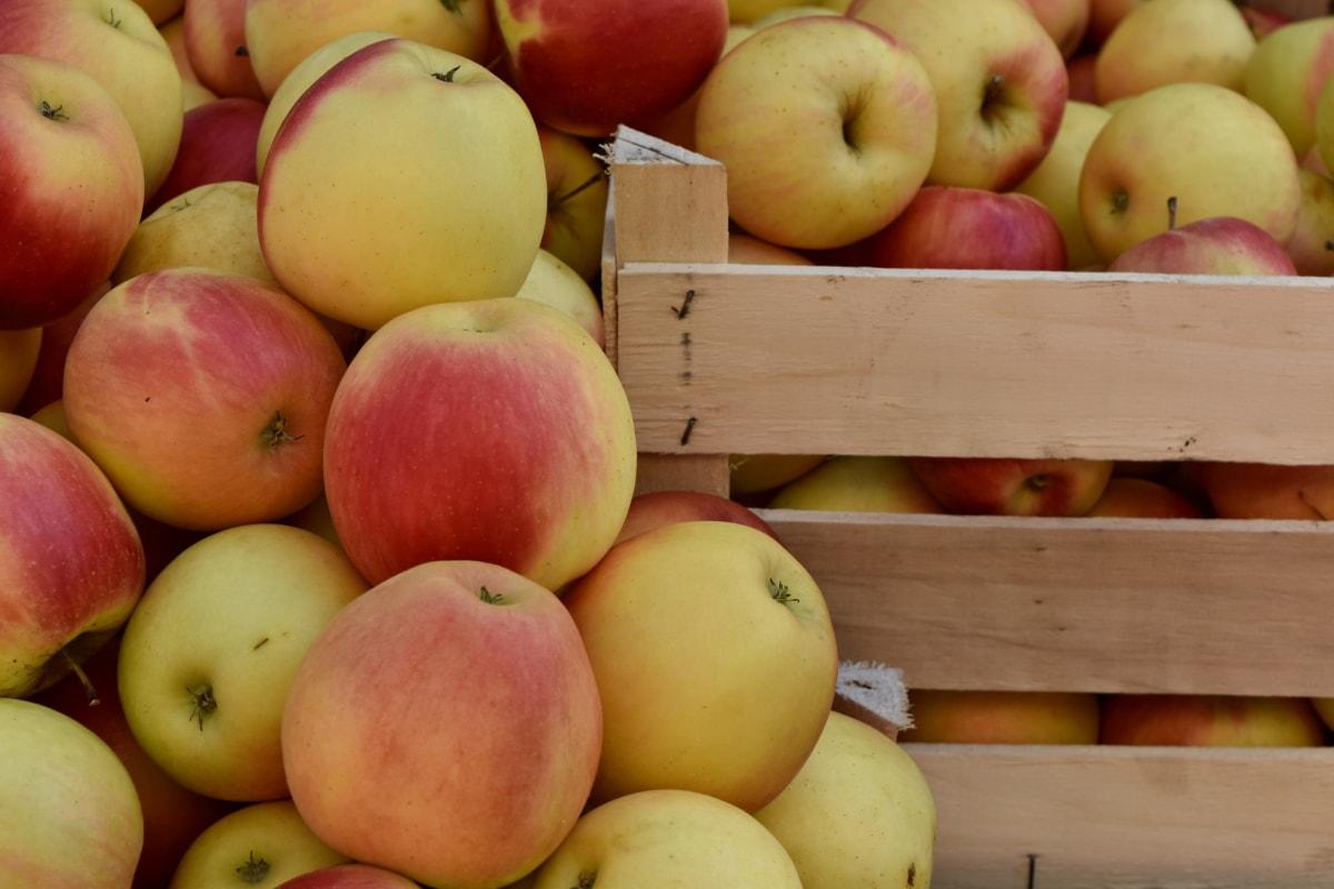 バスケット, 有機, フルーツ, 林檎, 新鮮です, 食品, おいしい, 健康的です