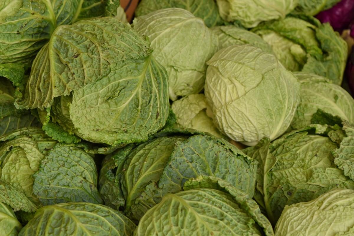 green leaves, salad, plant, food, vegetable, cabbage, herb, leaf