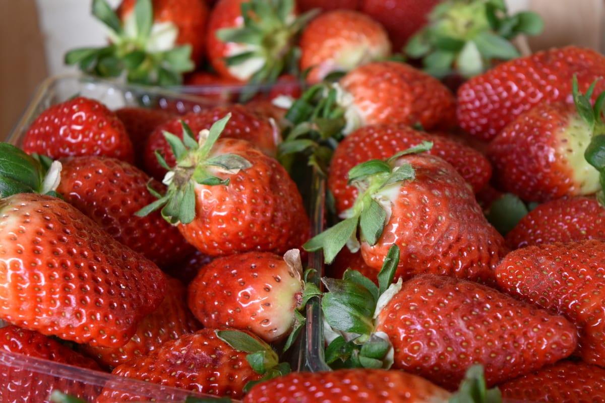 producere, frugt, Sød, bær, jordbær, dessert, mad, lækker
