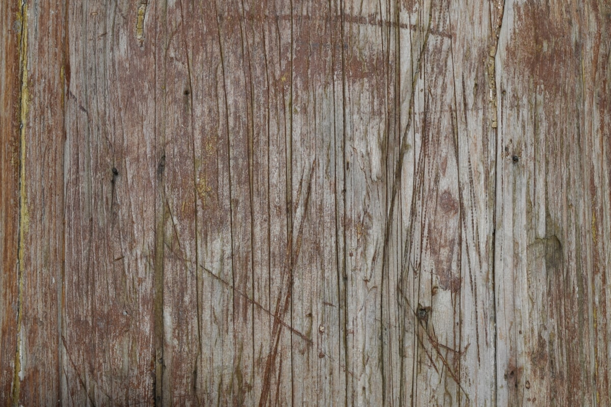 gamle, løvtre, mønster, tre, vegg, grov, tekstur, overflate