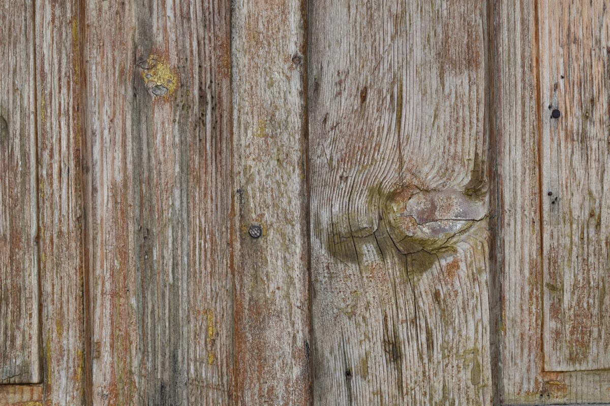 硬木, 结, 橡, 老, 表面, 木, 木材, 小组