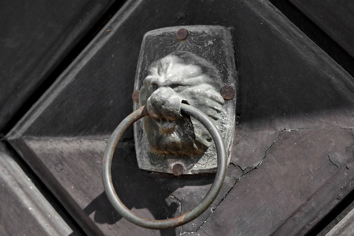aliaj, din fonta, uşa din faţă, Leu, Ornament, fier, vechi, oţel