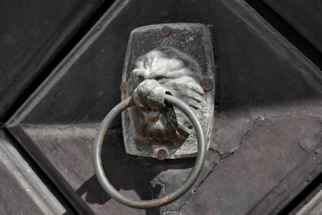 alloy, cast iron, front door, lion, ornament, iron, old, steel