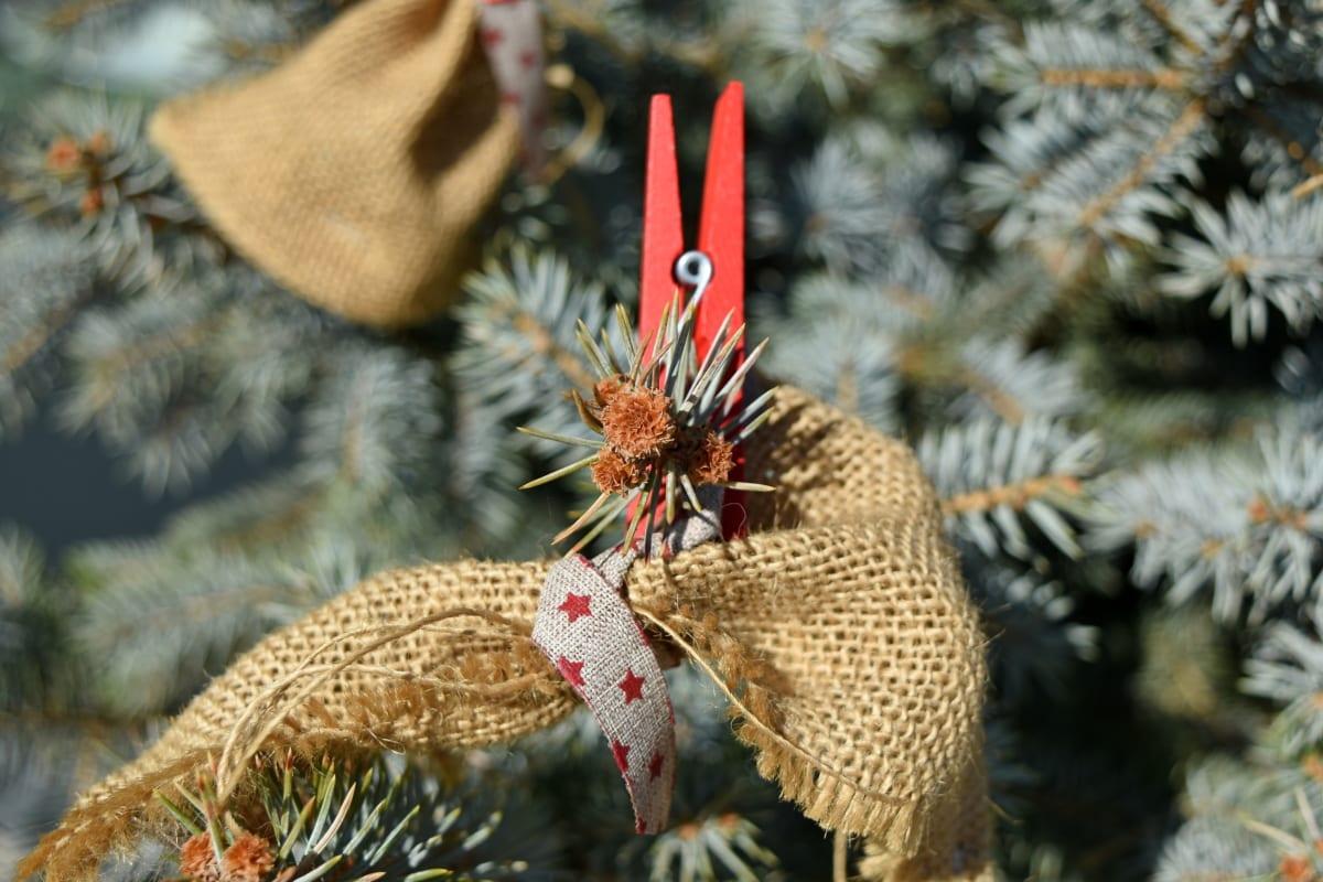 drvo, dekoracija, boja, stožac, bor, priroda, Sezona, nit