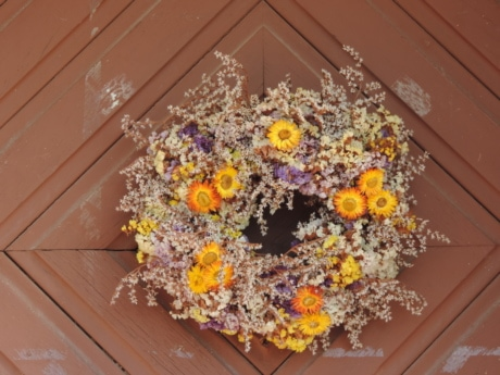 carpentry, decoration, front door, still life, flower, flora, color, design