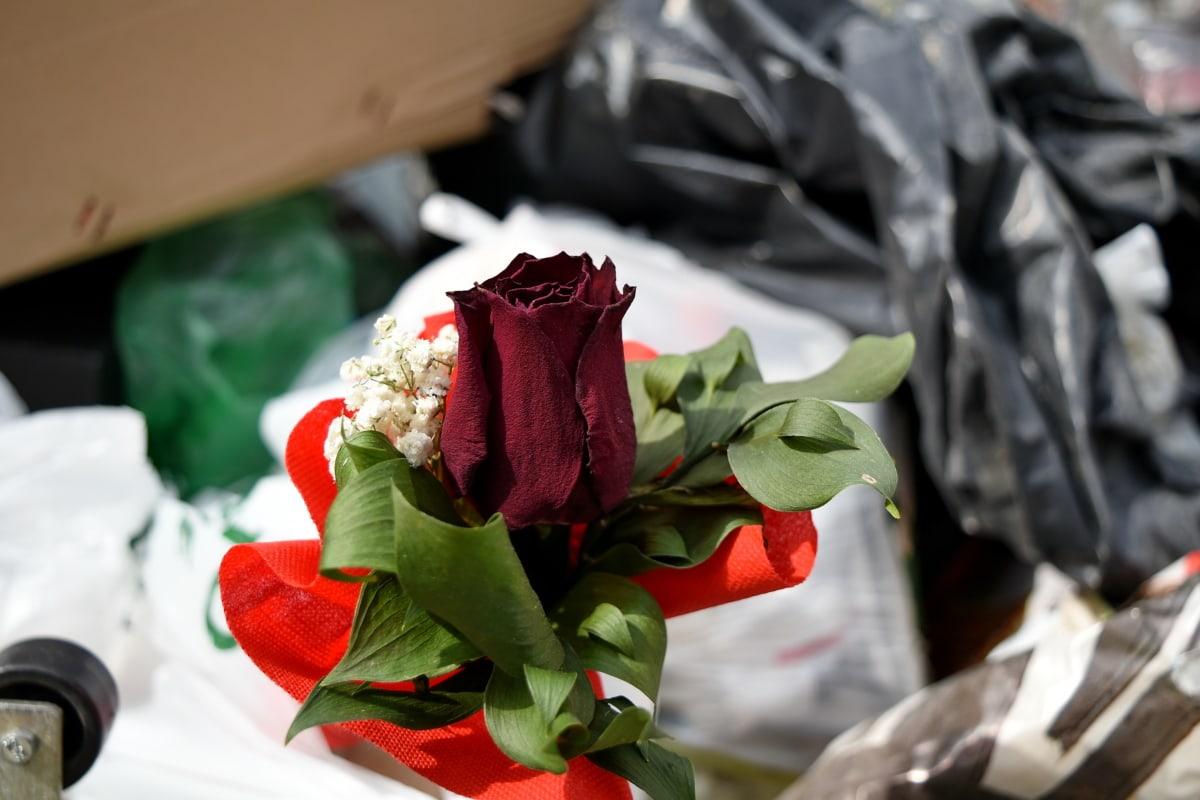 kytice, odpadky, Nevyžádaná pošta, smetiště, láska, růže, Koš, uspořádání