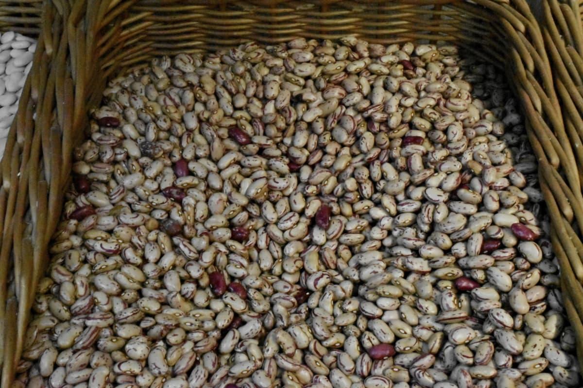 เมล็ดพันธุ์, ผัก, อาหาร, ถั่ว, ผลิต, โภชนาการ, ทำการเกษตร, แห้ง