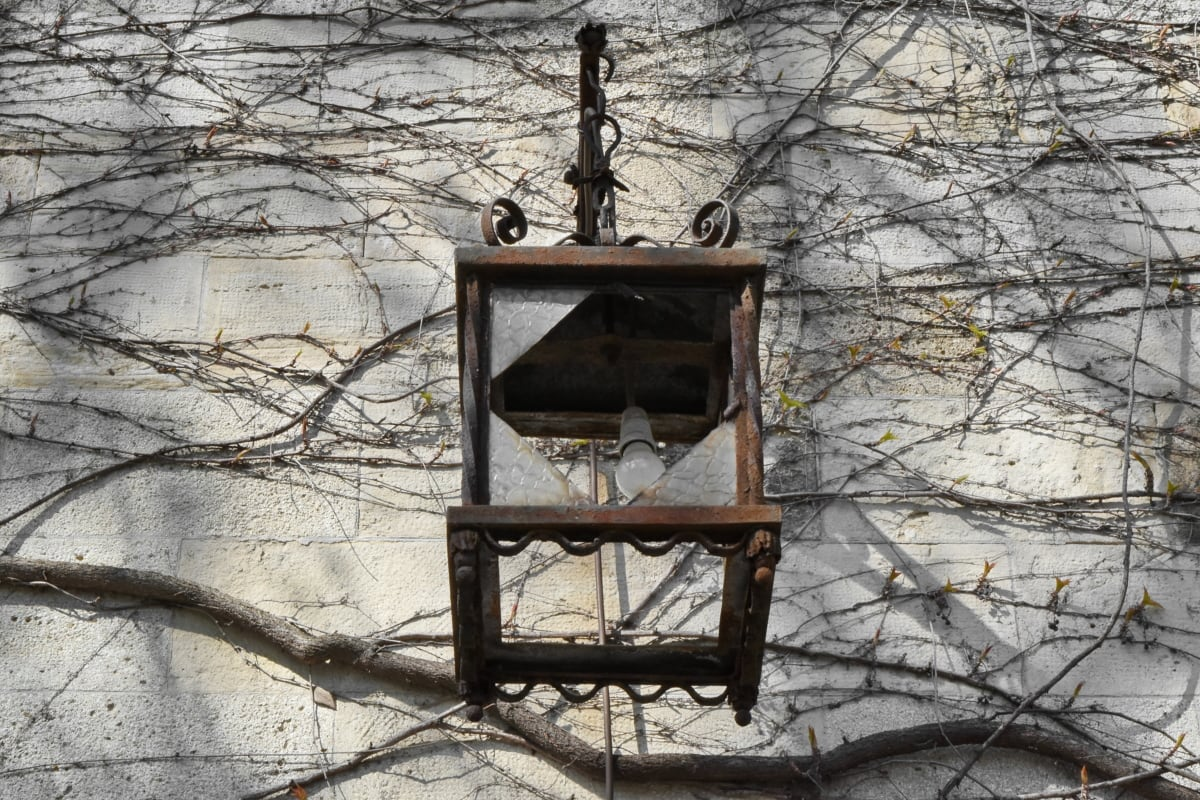 cast iron, glass, lamp, light bulb, device, tree, old, abandoned