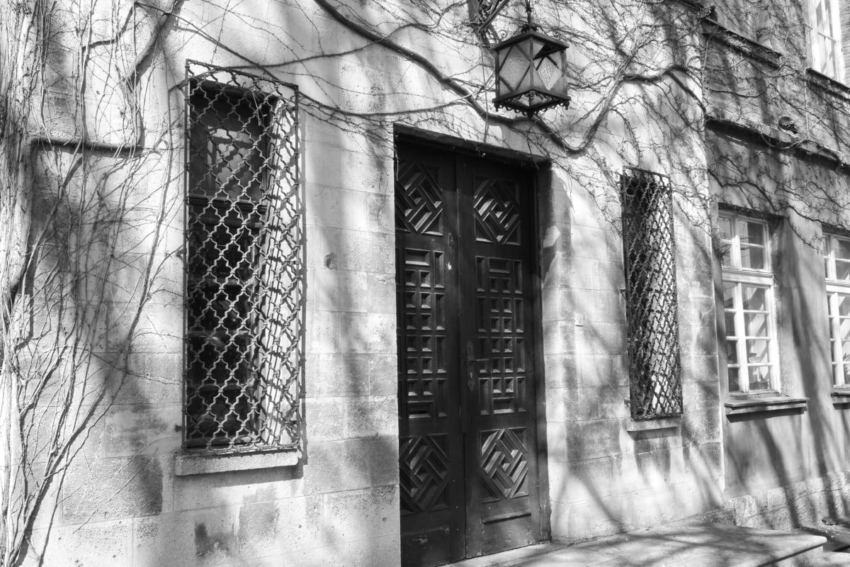 preto e branco, fachada, Hera, arquitetura, edifício, velho, casa, vintage