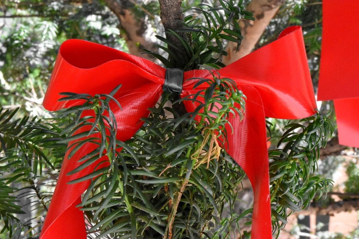 jul, træ, plante, busk, fest, dekoration, tråd, hængende